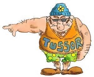 Projet de bureau Tussor10