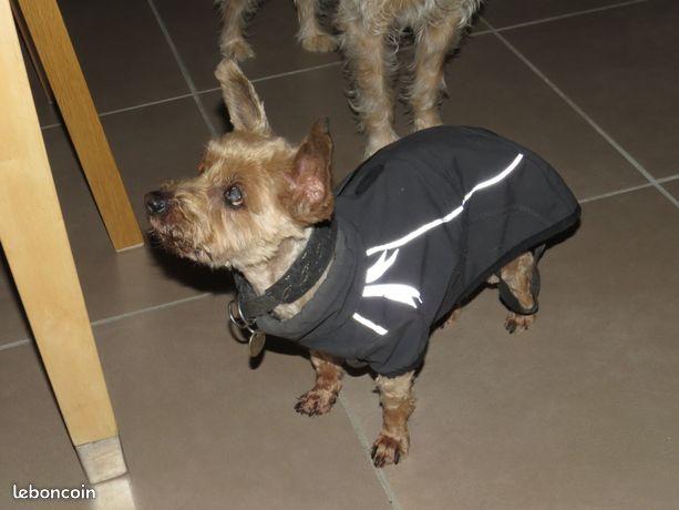 Manteau Hurrta frost jacket petit chien 20€ Bd5a9e10