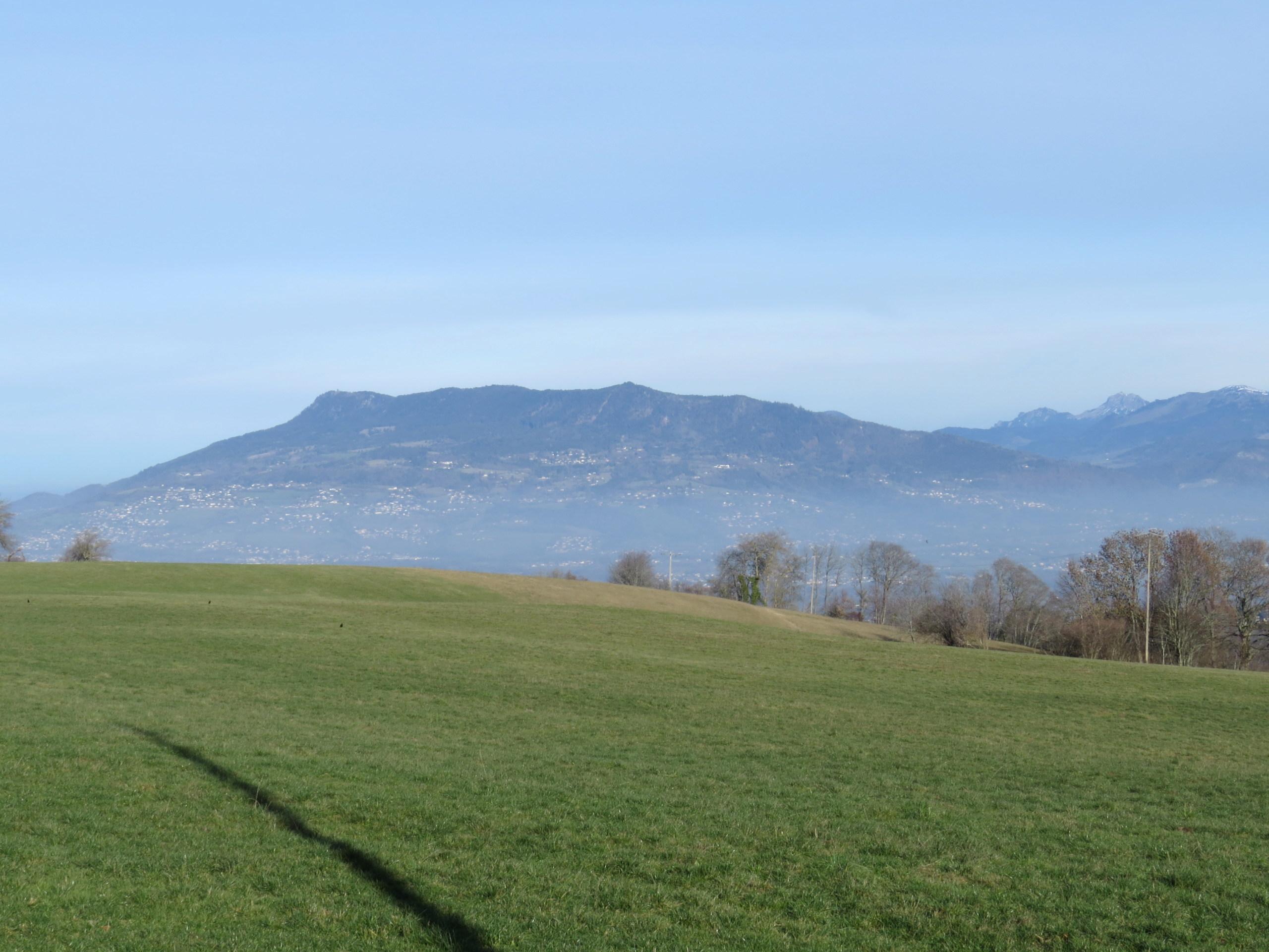 Balades canines: Pays de Gex/Jura/Genève ou Albertville (73) - Page 8 Img_3868
