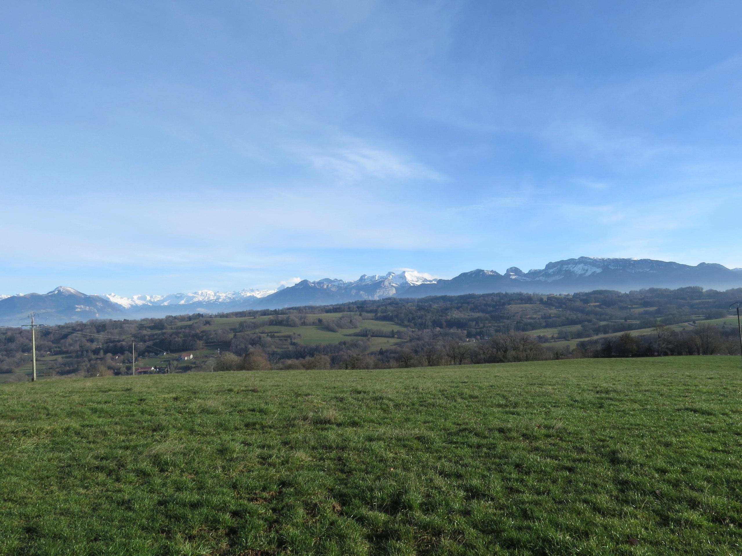 Balades canines: Pays de Gex/Jura/Genève ou Albertville (73) - Page 8 Img_3869