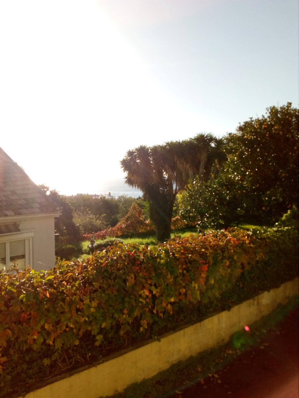 Location Bastia, Mai /Juin /Septembre / Octobre Img_2114