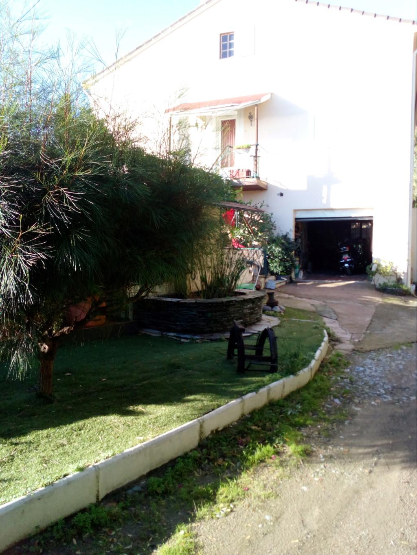 Location Bastia, Mai /Juin /Septembre / Octobre Img_2117