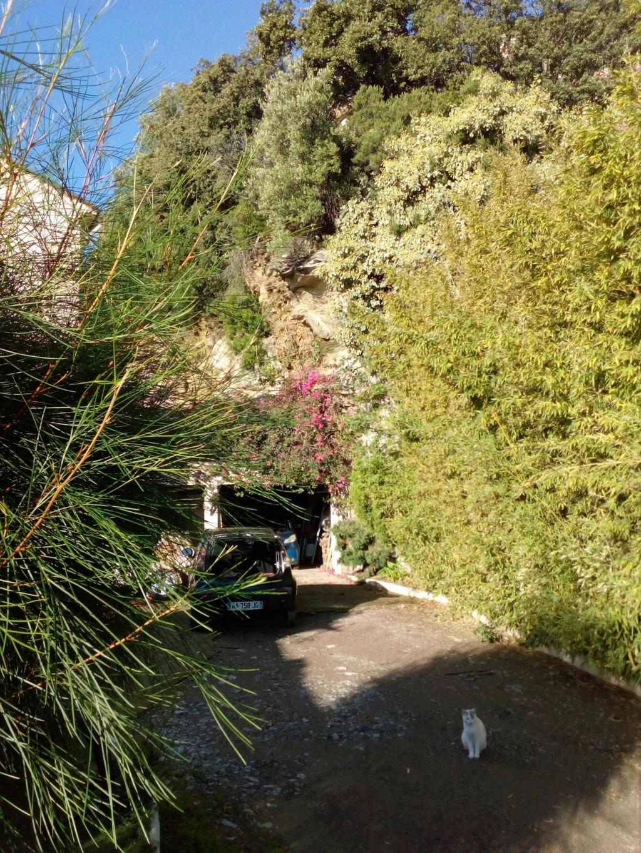 Location Bastia, Mai /Juin /Septembre / Octobre Img_2118