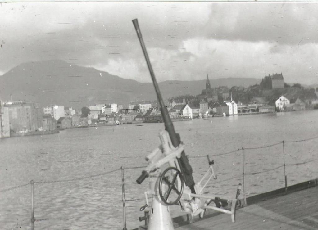 Zinnia / Breydel (Garde-pêche) - Page 9 Flak_310