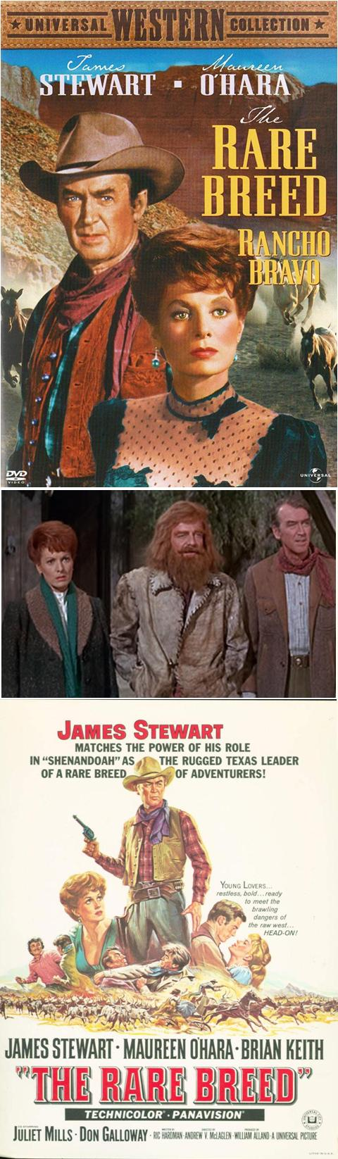 Rancho Bravo - The Rare Breed - Andrew V McLaglen - 1966 5-agai11