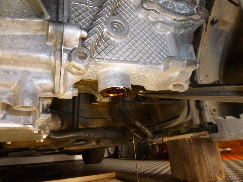 bruit moteur suspect suite circuit - Page 2 P1060323
