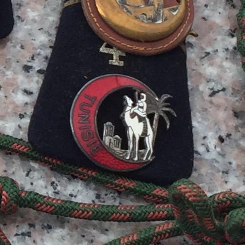 Insigne régimentaire 411f8910
