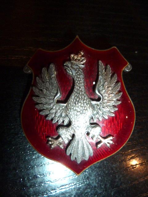 Insigne/Badge polonais P1670113