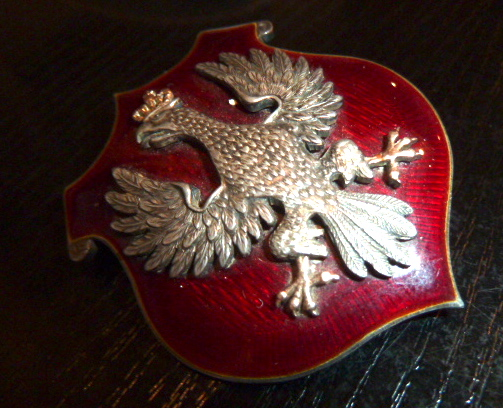 Insigne/Badge polonais P1670115