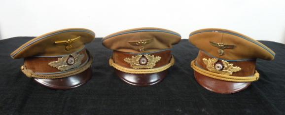 casques à pointe,Insignes, SS, schirmutzen....... P1770814