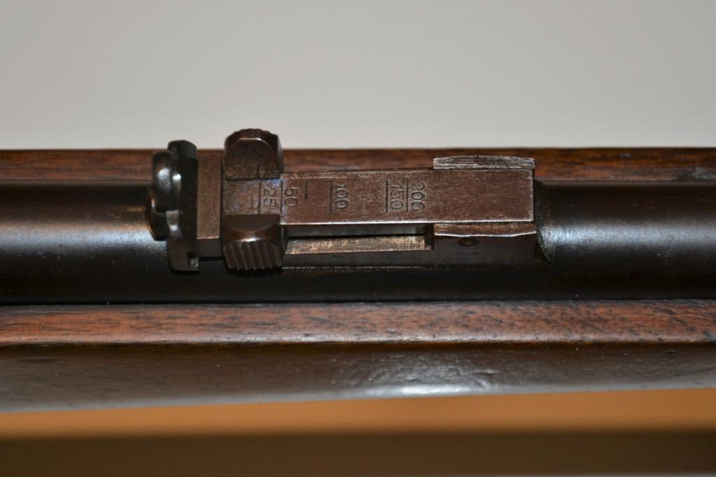 Carabine scolaire Nationale Rifle .22 LR Dsc_0723