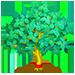 Vous cherchez un arbre ? Venez cliquer ici !!! Jadetr11