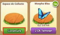 Colline aux Papillons => Morpho Bleu / Piéride des Jardins / Eurytide Epidaus / Monarque Sans_279