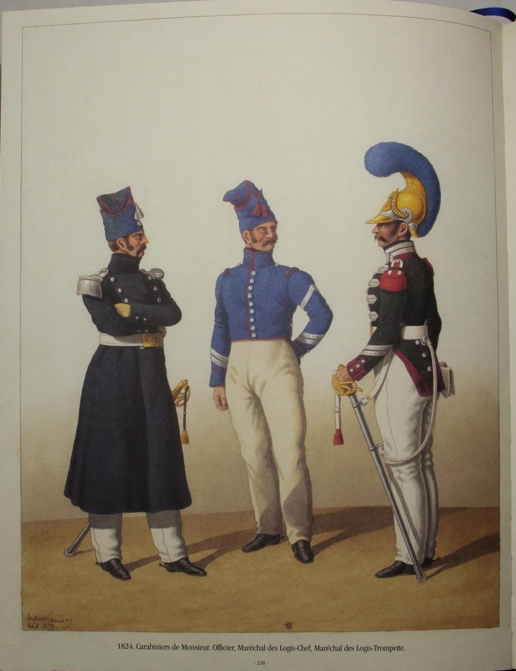 Sabre officier dragon ou carabinier ??, empire ou restauration ?? _mg_8612