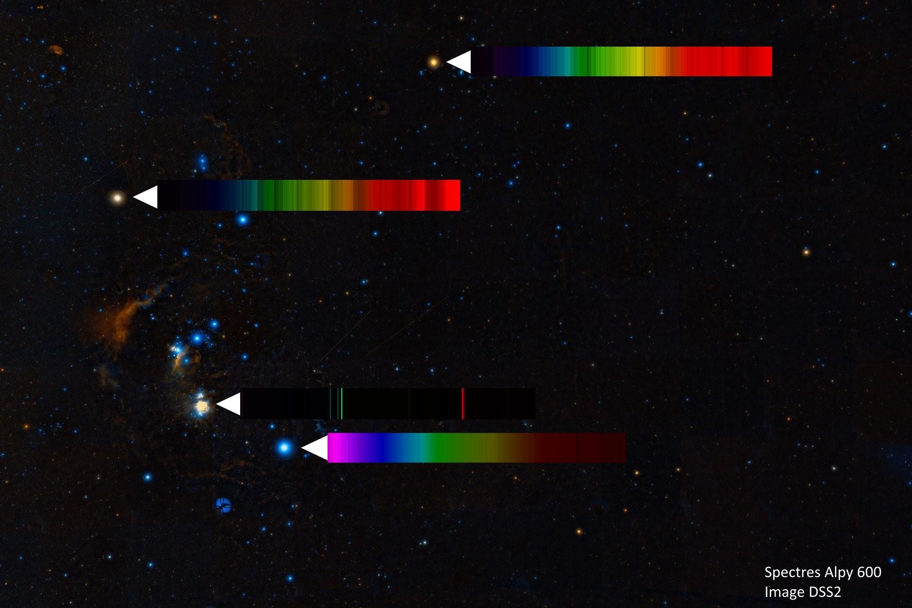 Spectres d'étoiles remarquables - Page 3 50758812
