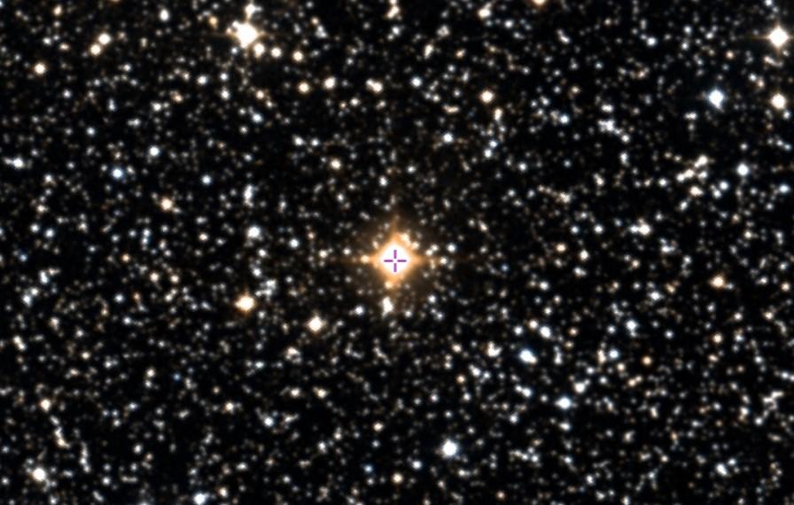 L'étoile hydrogène de Campbell (la grenouille et le boeuf)  Campbe10