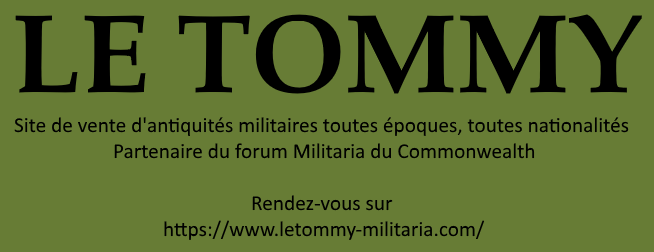MILITARIA DU COMMONWEALTH Lt210
