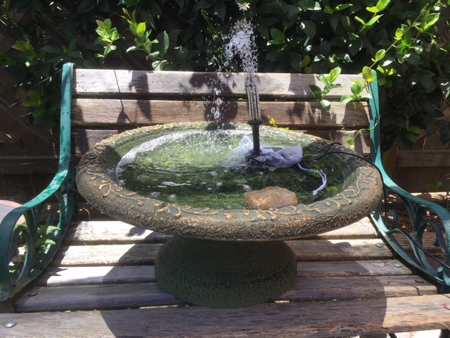 Bird baths with solar powered pump Bird_b11