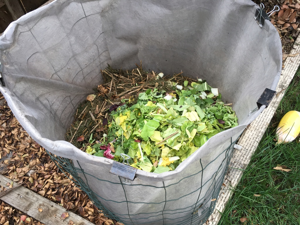 inexpensive compost cage.. Compos13