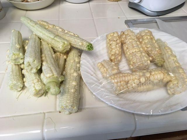 Corn Growing - Page 3 Corn_810