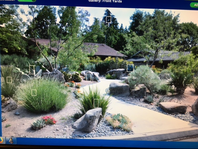 Northern California & Coastal Valleys - What are you doing this month? - Page 16 Drough12