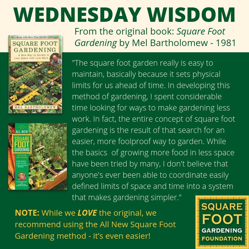 Wednesday Wisdom - SFG Foundation Founda10