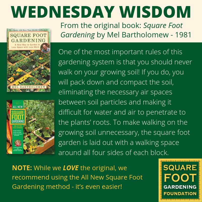 Wednesday Wisdom - SFG Foundation Founda13