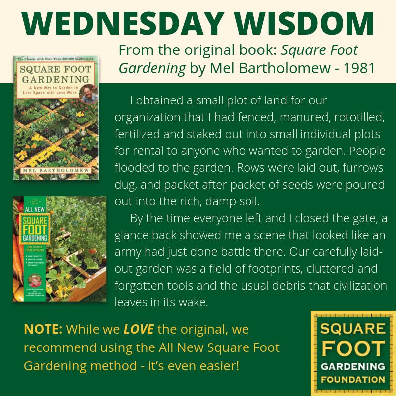 Wednesday Wisdom - SFG Foundation Founda14