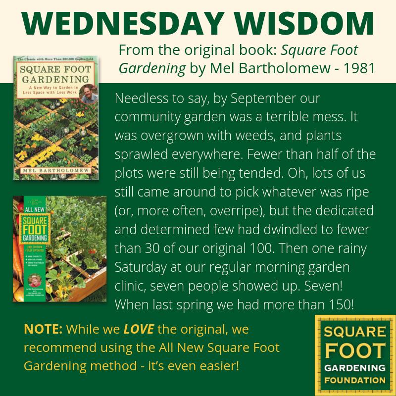 Wednesday Wisdom - SFG Foundation Founda17