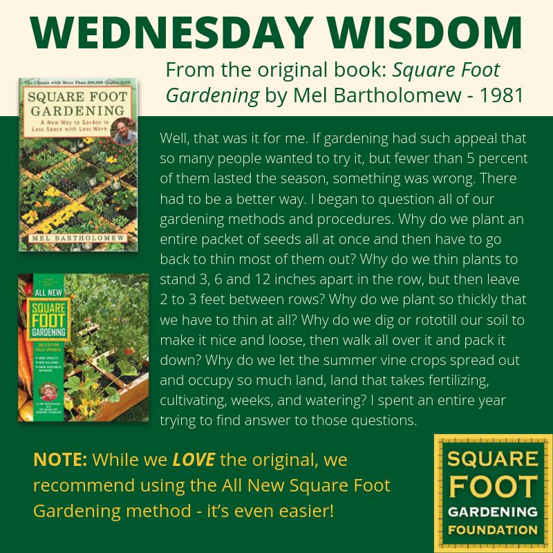 Wednesday Wisdom - SFG Foundation Founda18