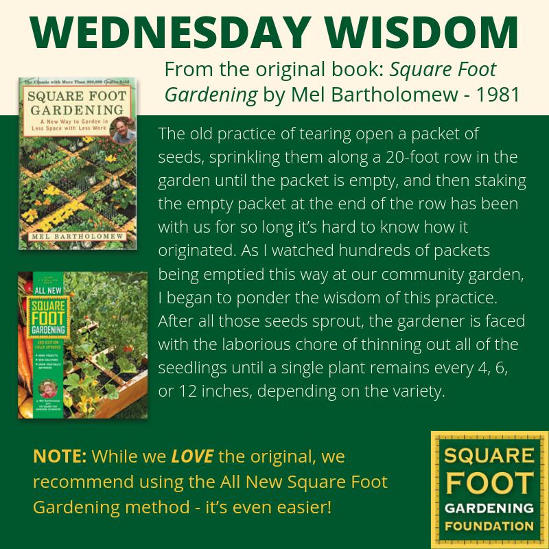 Wednesday Wisdom - SFG Foundation Founda20