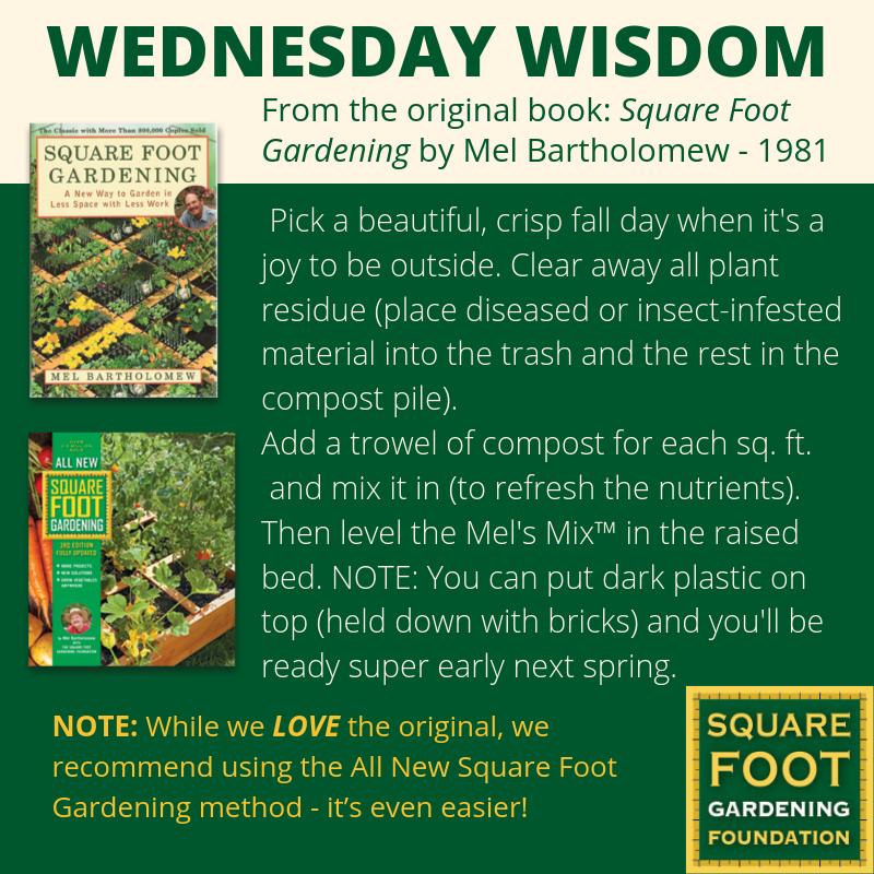 Wednesday Wisdom - SFG Foundation Founda22