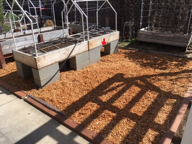 elevated raised bed over cemented area Garden98