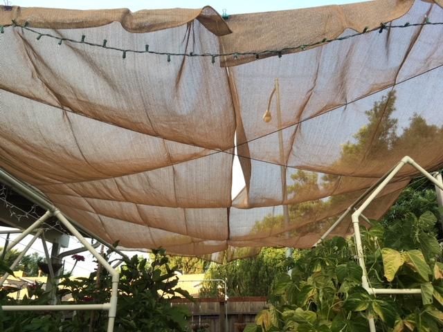 Heat wave and shade screen Sun_sh12