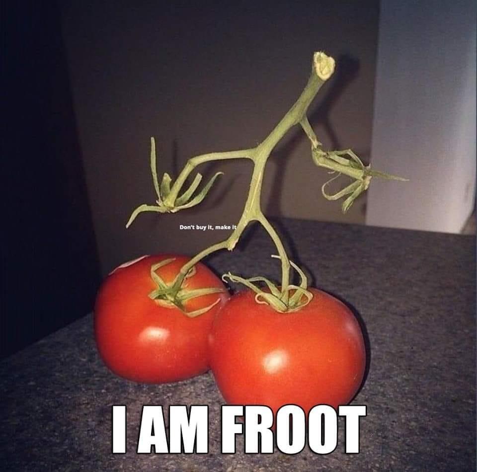 Tomato Tuesday - 2018 & 2019 - Page 5 Tomato17