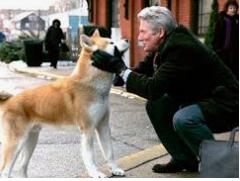 Filmempfehlung für Freunde des Hundes Hachik10