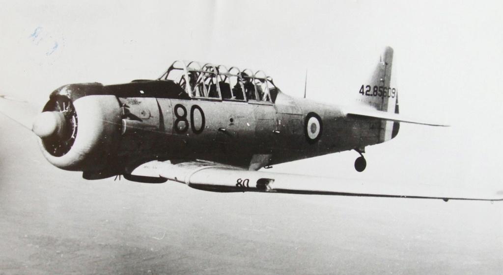 Le T6 en Algérie S-l16026