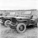 La jeep HOTCHKISS M201....Une jeep bien française Indoch11