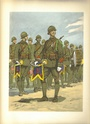 Planches uniformes Armée Française.... - Page 4 Inf_co19