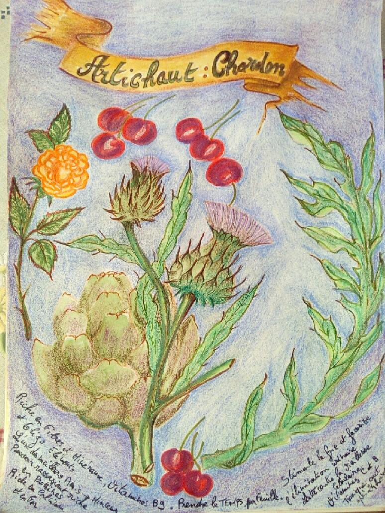 2019/06 - Dessiner Les Légumes  Tablea11