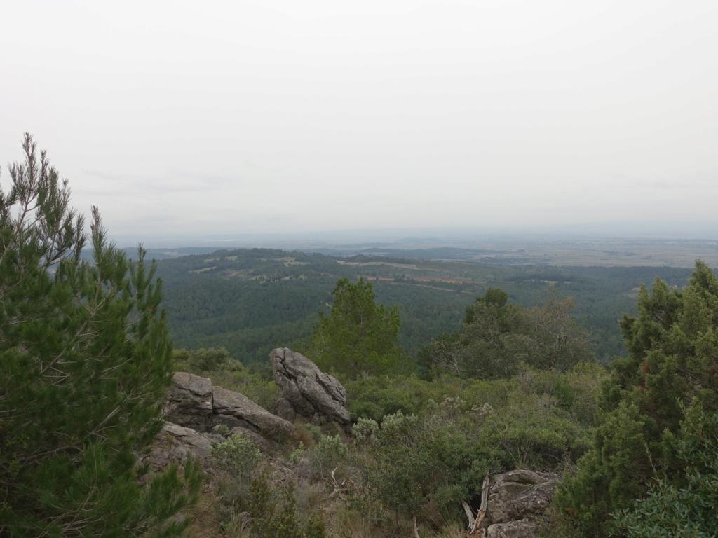 Montagne Noire Dsc09914