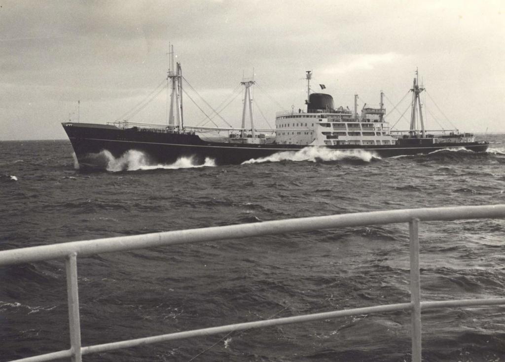 Dio : Arrivée à NYK du SS Brasil & remorqueur (Revell 1/400°) par PLEF - Page 2 Maori_10