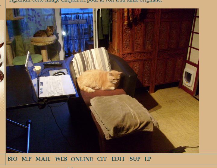 (#4160) : Redimensionnement automatique des images postées - Page 2 Prob_d10