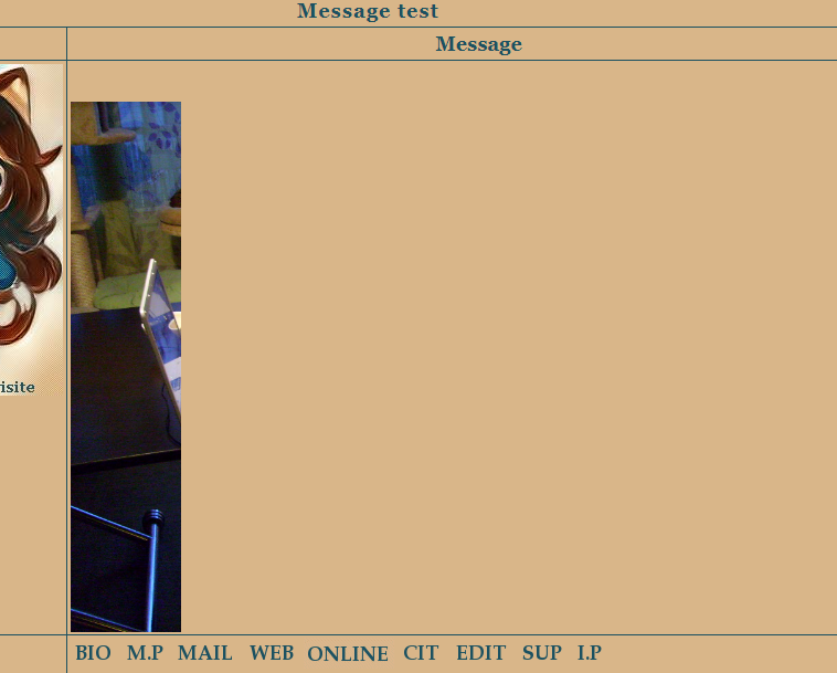 (#4160) : Redimensionnement automatique des images postées - Page 2 Prob_d13