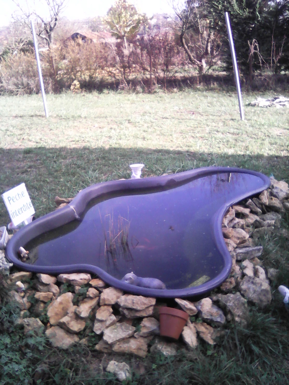 Mon bassin de jardin - Page 10 Img00011
