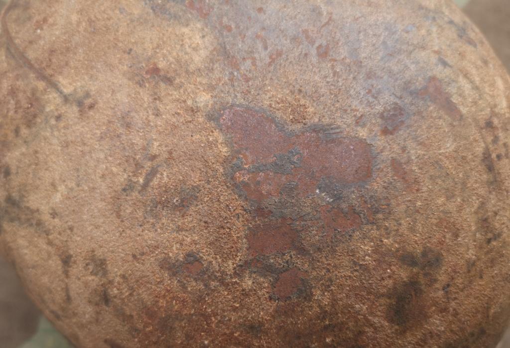 M42 camo en broc Img_2246