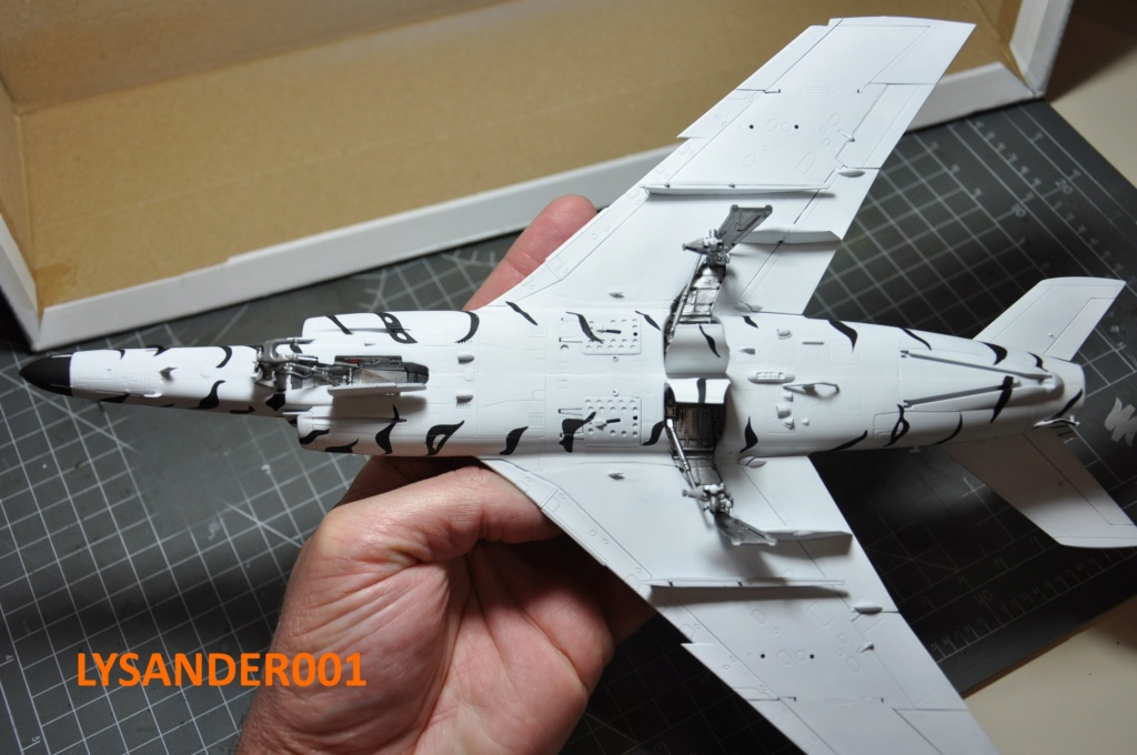 Super Etendard 1/48 Kinetic - Page 5 Dsc_0021