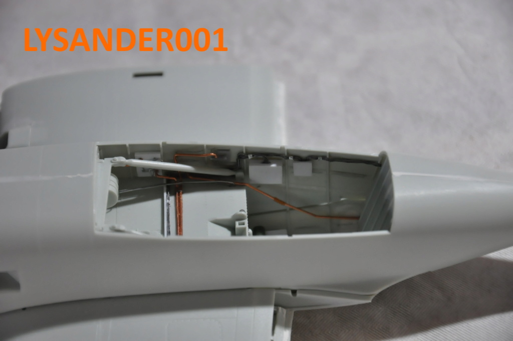 Heinkel He 219 A-7 UHU REVELL 1/32.  - Page 2 Dsc_0262