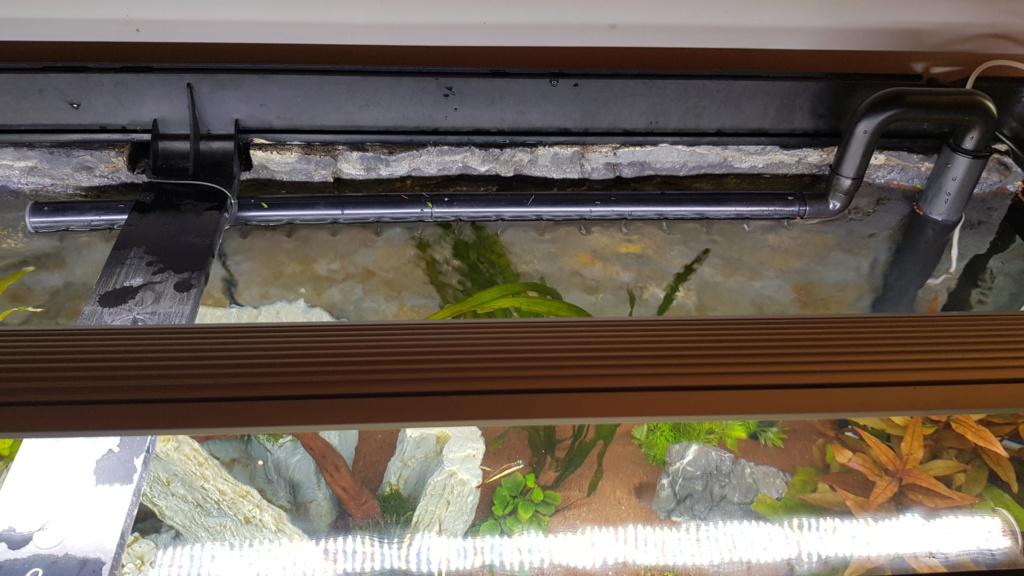 Fluval Roma 240 planté/aquascape - Page 3 20200612