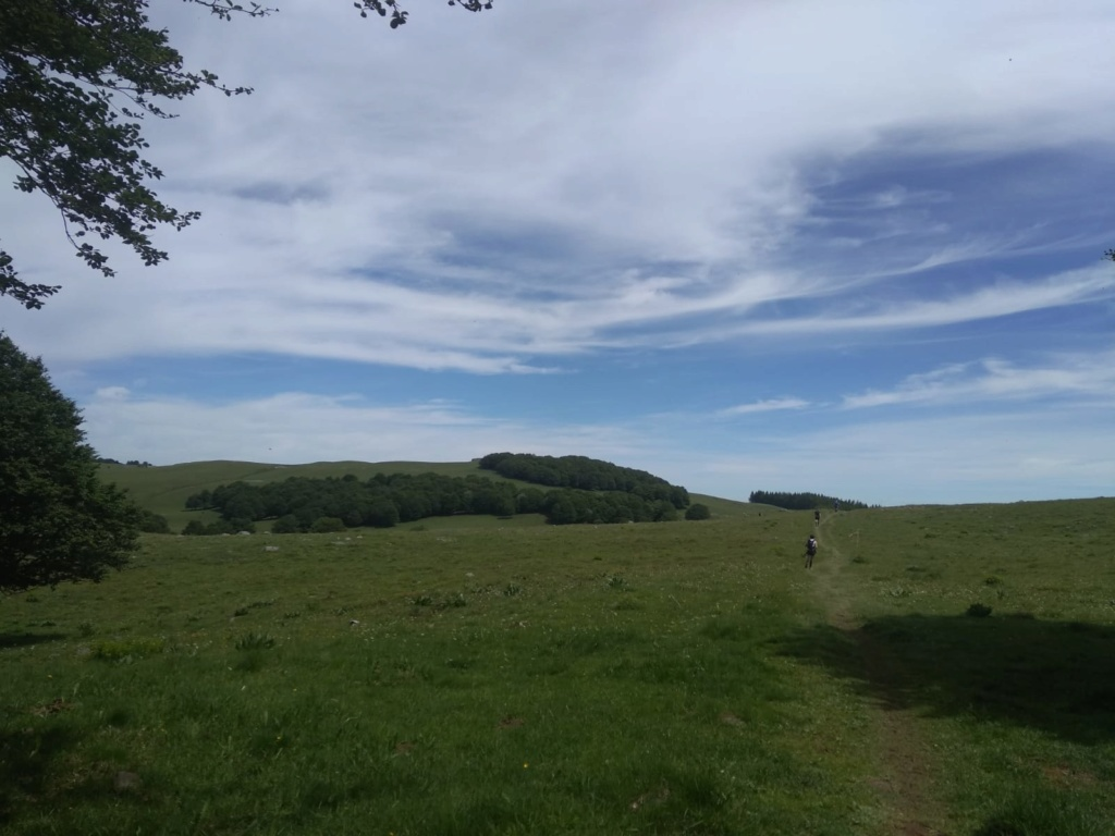 Trail de l'Aubrac 2019 Index311